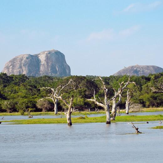 Elephant Rock im Yala Nationalpark