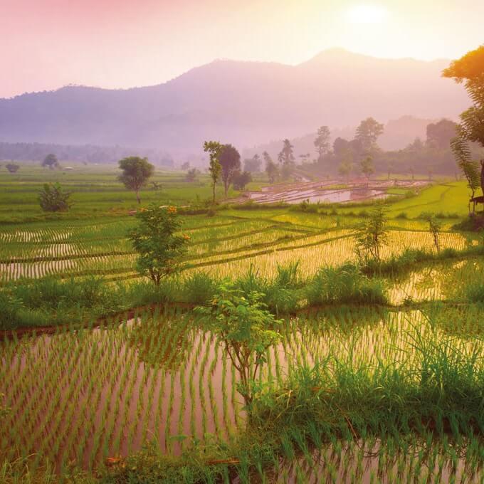 Bali_Header1