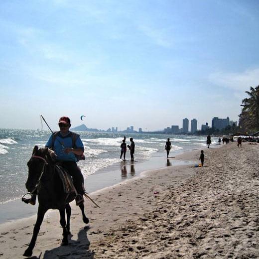 Selbst Pferde besuchen den Strand ab und zu