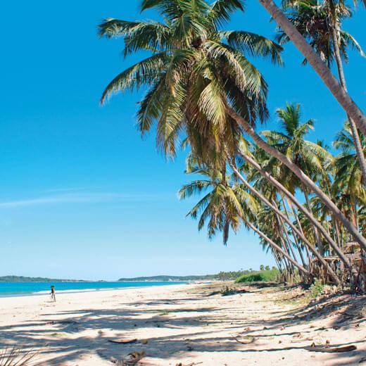Der perfekte Ort für Badeferien, der Strand bei Beruwela