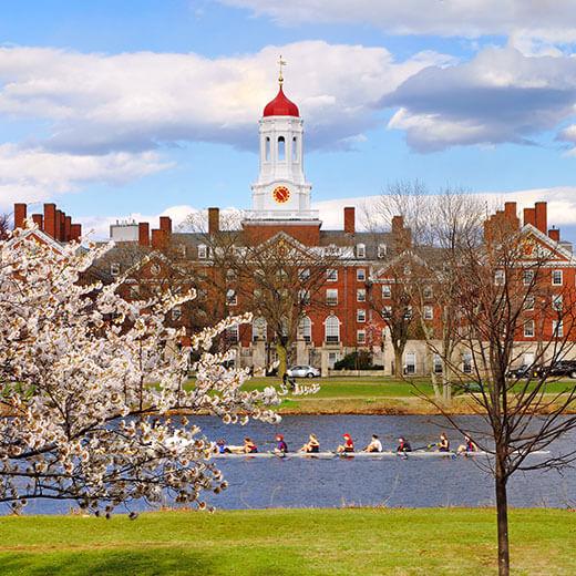 Die Universität Harvard im Frühling