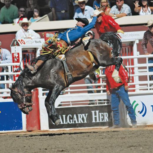 Spektakuläre Events an der Calgary Stampede