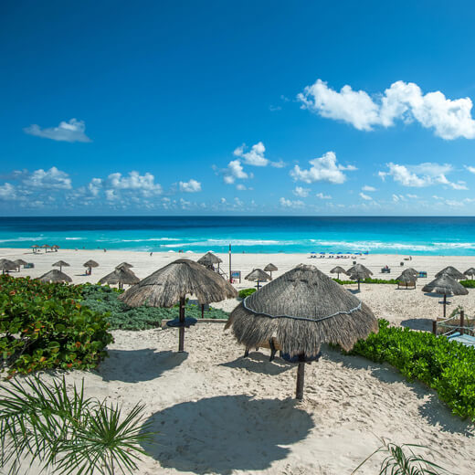 Dolphin Beach, Cancun