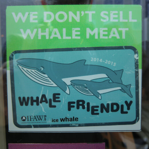 Whale friendly Kleber