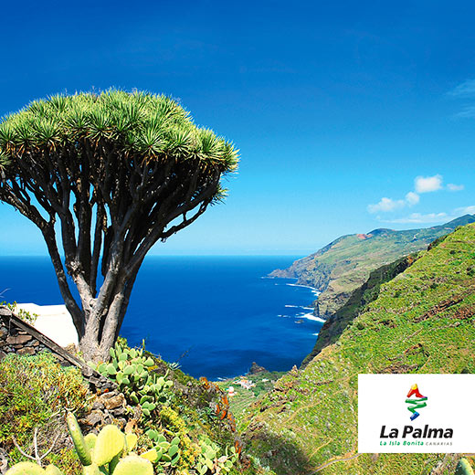 Das vielseitige La Palma