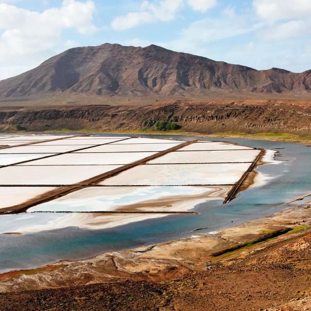 Die Salzfelder Salinas