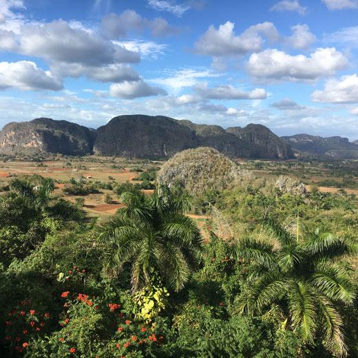 Vue sur la vallée de Viñales