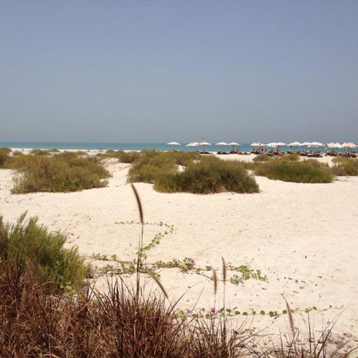 Traumhafter Strand vom Hotel Park Hyatt auf Saadiyat Island