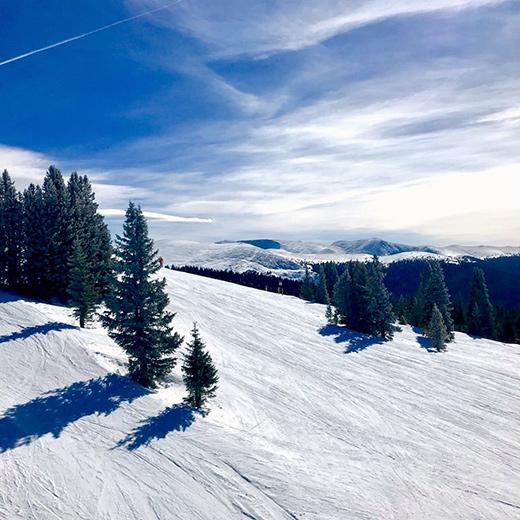 Ein abwechslungsreiches Skigebiet mit vielen Waldabfahrten.