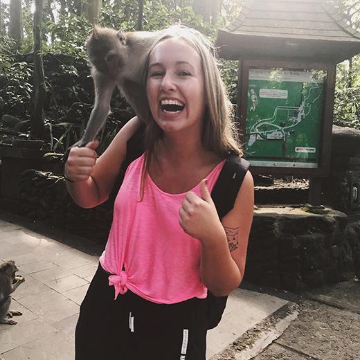 Einige neue Bekanntschaften im Affenwald machen