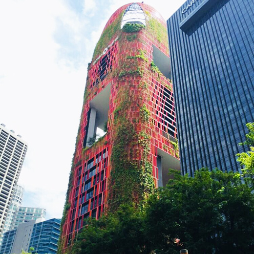 Das grünbewachsene Oasia Hotel Downtown