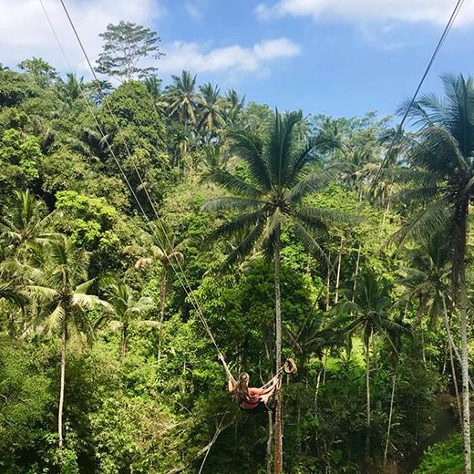 Einen Adrenalinkick bei der Schaukel in den Dschungel wagen