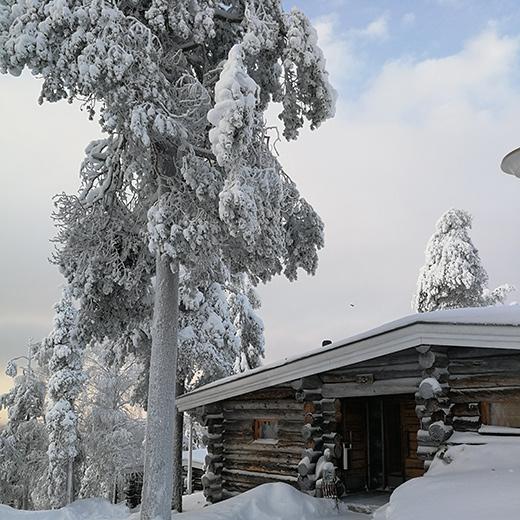 Notre maison dans la neige