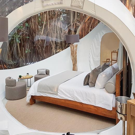 Dormir à la belle étoile dans un lit confortable et sans moustiques.