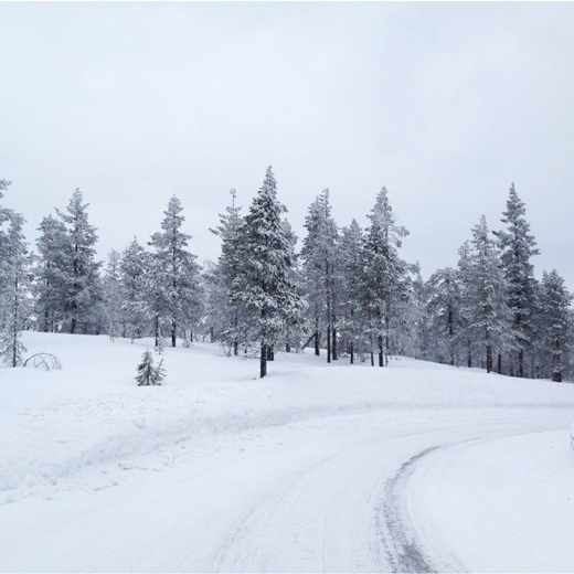 Wunderschöne Schneelandschaft