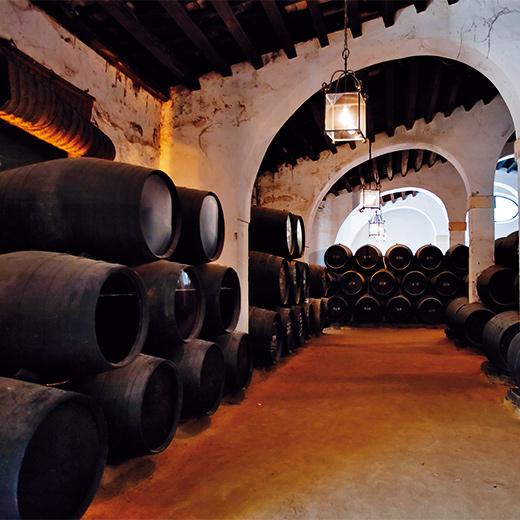Besuche in Jerez de la Frontera eine Sherry-Bodgea