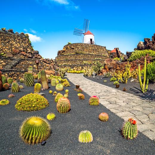 Jardín de Cactus, une œuvre de César Manrique